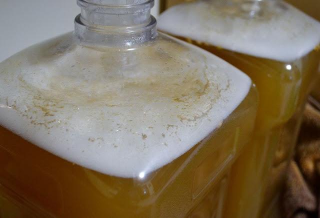 Lactobacillus fermentation
