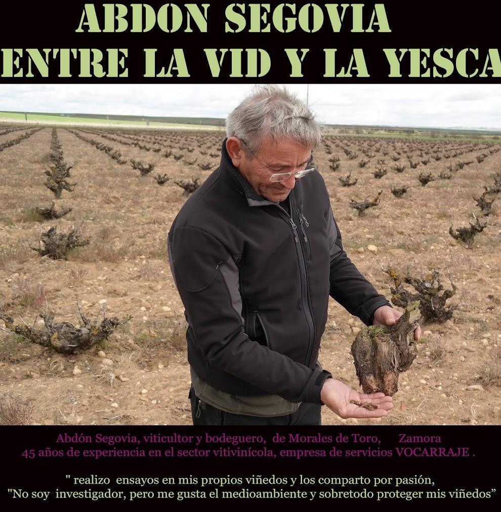 Abdon Segovia entre la vid y la yesca