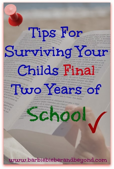 tips for final 2 years of school hsc-vce-sat-alevels