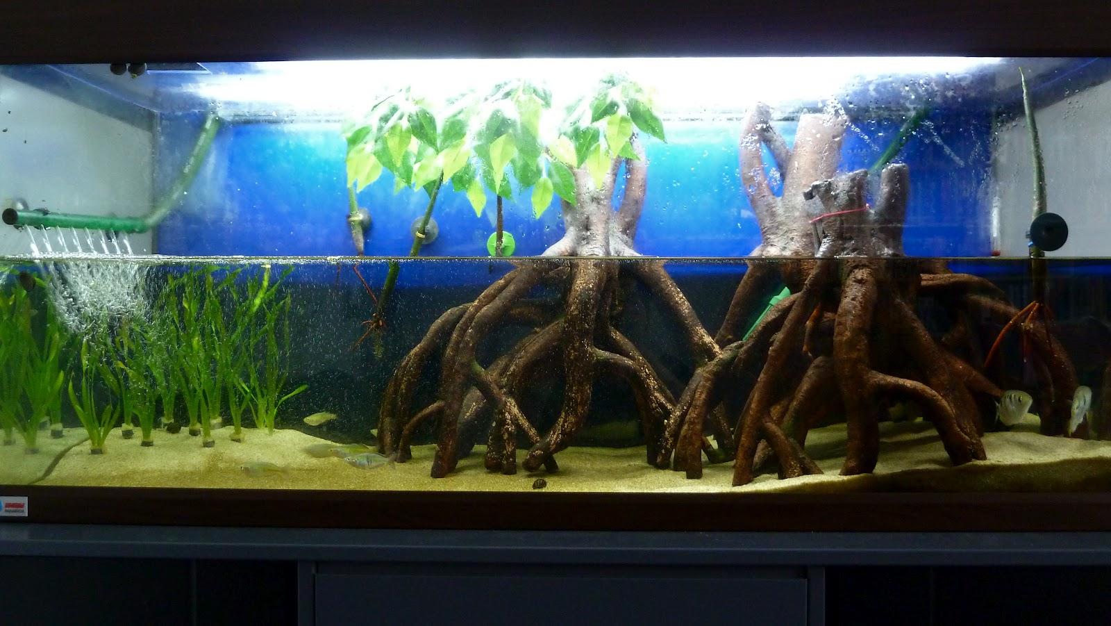 Mangrove Aquarium Decoration