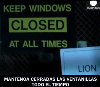 leon-devora-turista