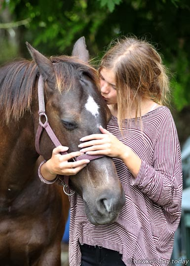 Ashleigh Kearns, Napier, with her horse, Stella, which was stolen and abused. Police are investigating. photograph
