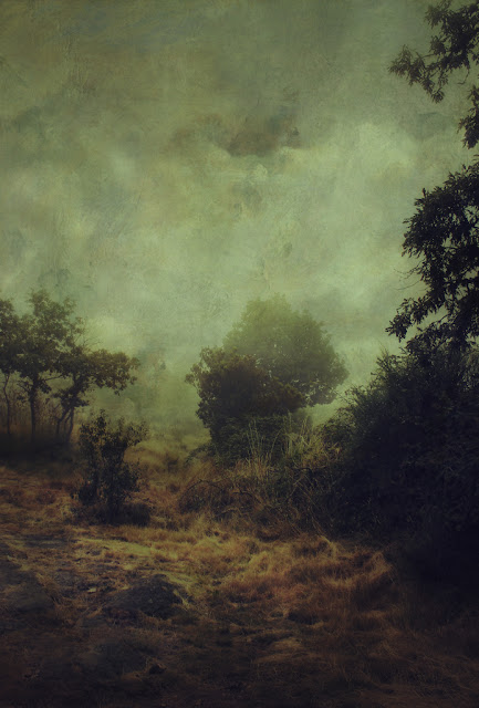 landscape art photo contemporary art Friedrich pictorialism