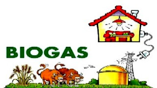 Higher Subsidy For Setting Up Biogas Plants Generating