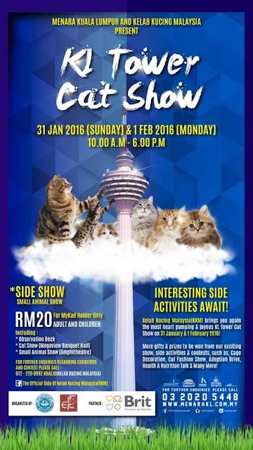 KL tower cat show, menara kuala lumpur