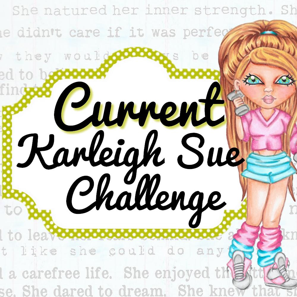 Karleigh Sue Challenge Blog