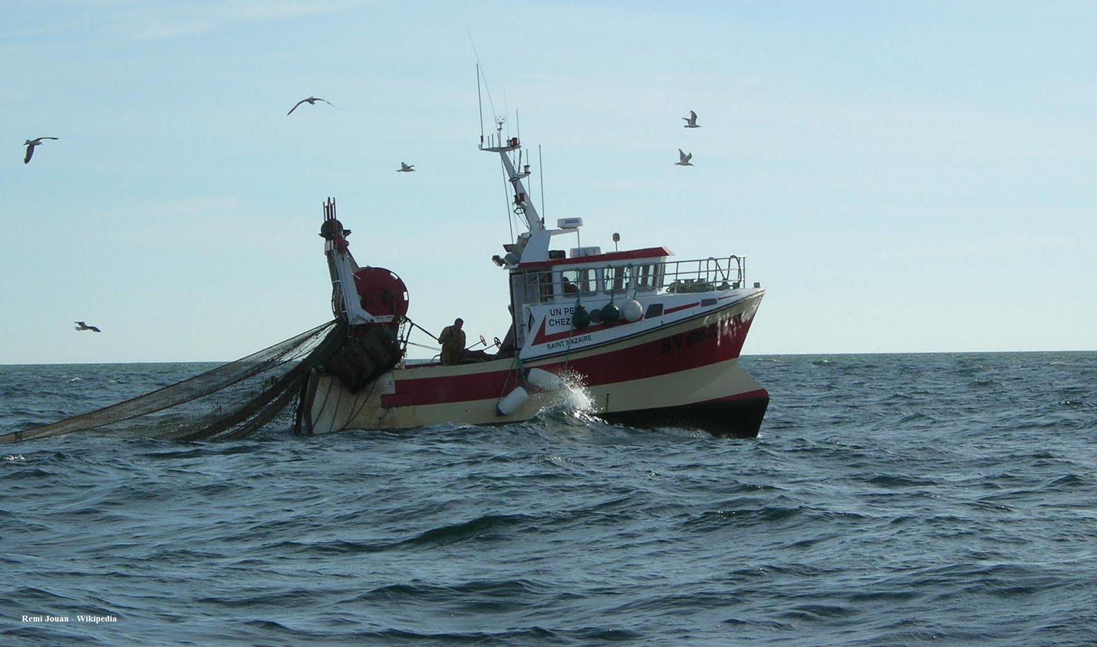 Le bateau pour la pêche londe
