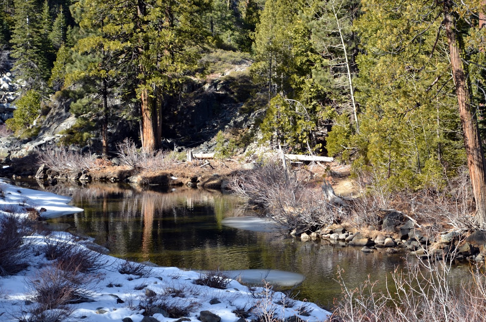 Leigh osborne photography folsom ca lack of snow in the for Donner lake fishing report