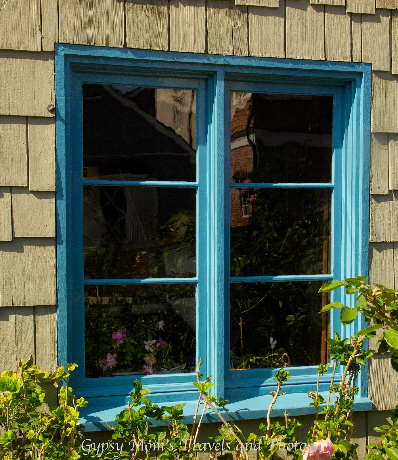 Blue Window on wood shingle house on Balboa Island