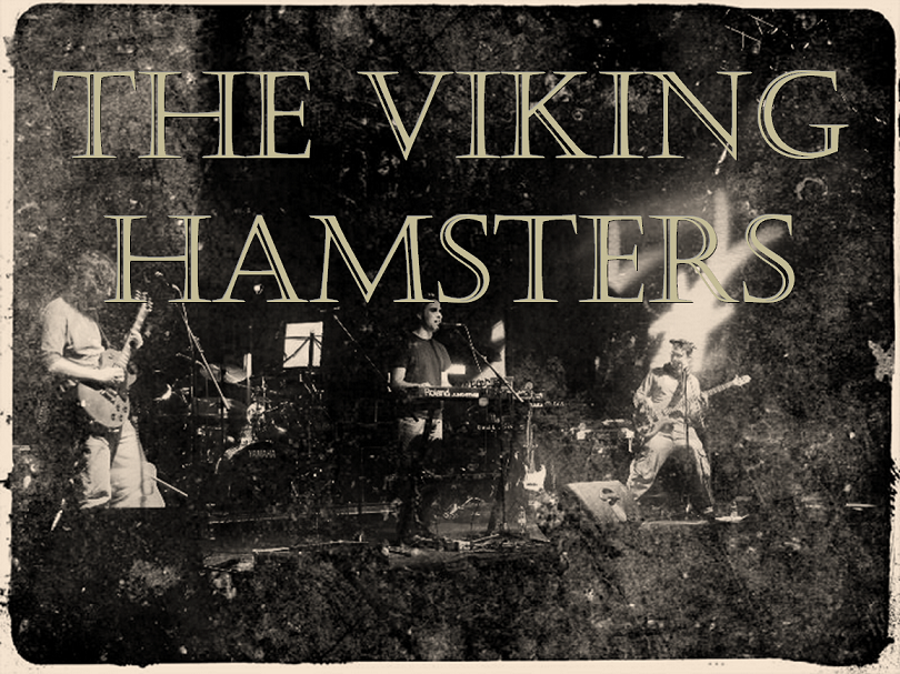 <center>The Viking Hamsters</center>