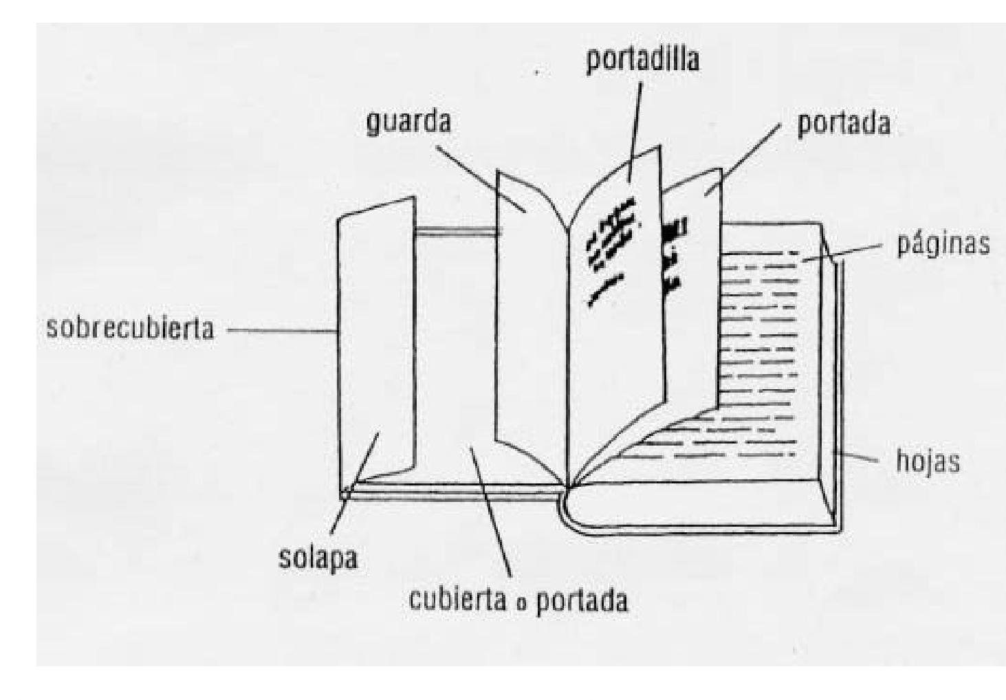 10 partes de un libro: