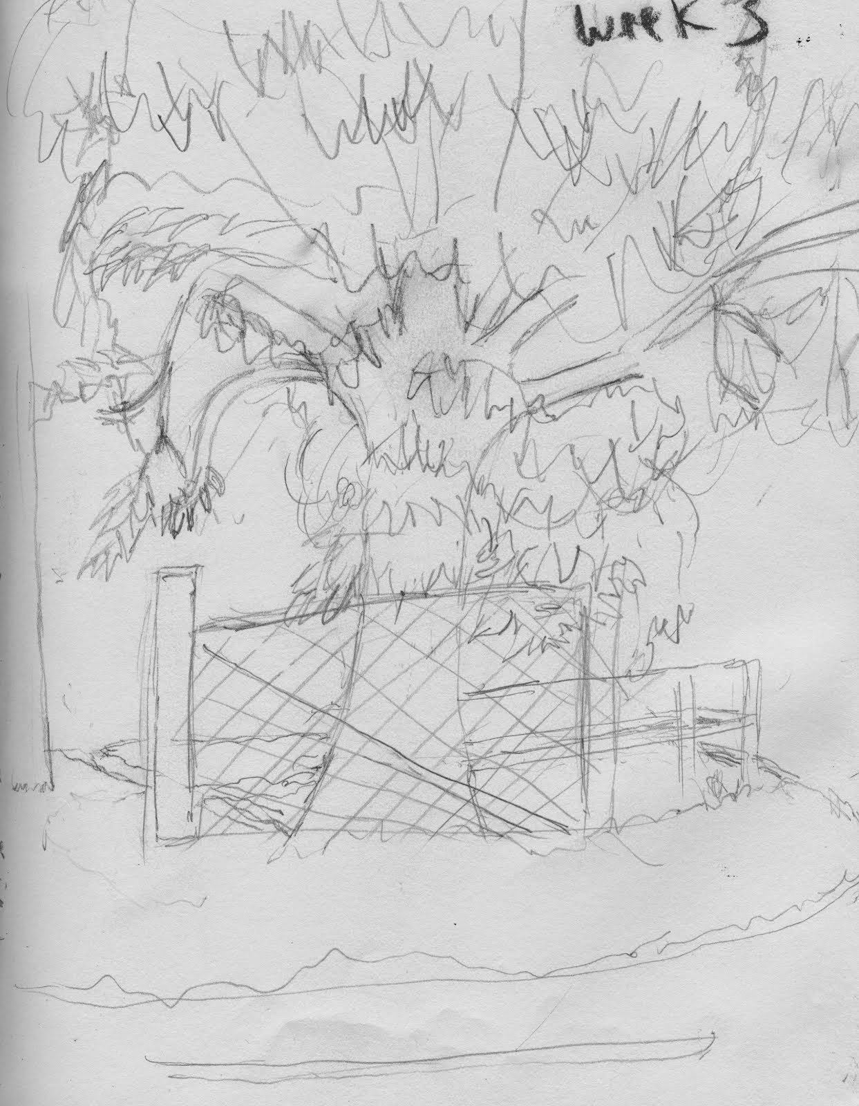 sketch of environment