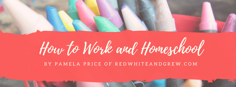 How to Work & Homeschool