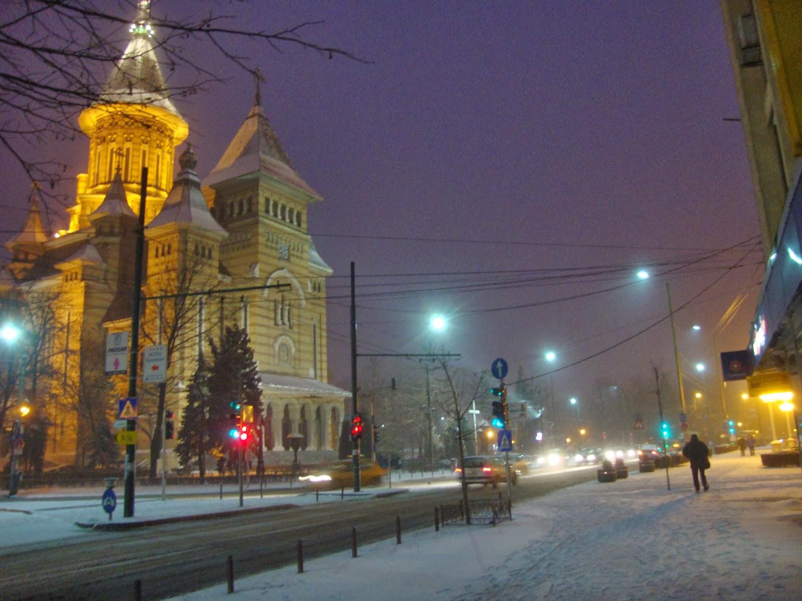 Catedrala Timisoara iarna
