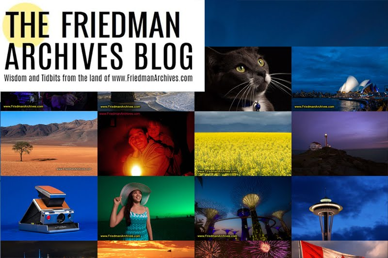 The Friedman Archives Blog