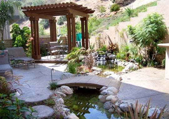 Natural backyard design ideas with pond home decorating for Cheap pond ideas