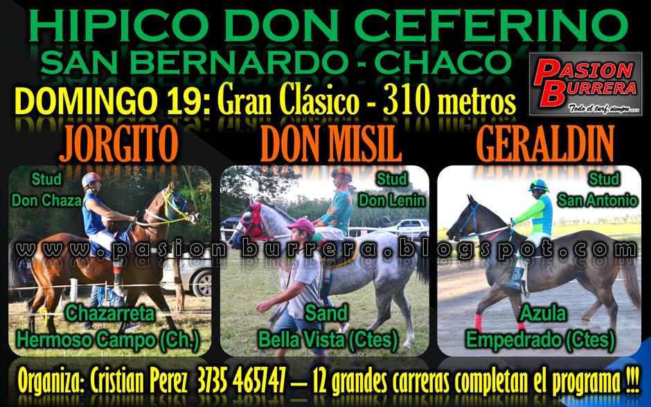 SAN BERNARDO 26 - 330 METROS