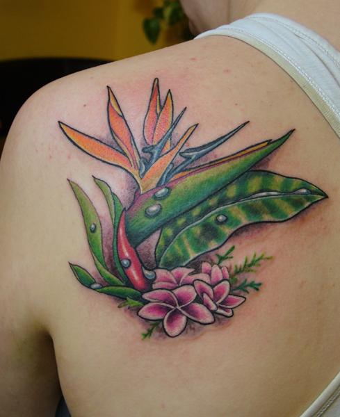 Bird of paradise tattoo - photo#18