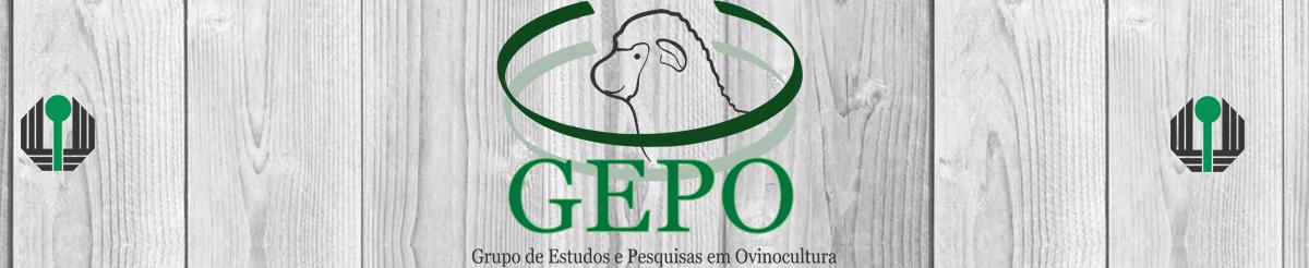 GEPO - Grupo de Estudos e Pesquisa em Ovinocultura