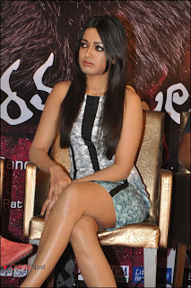 Catherine Tresa  Pictures at Iddarammayilatho Platinum Disc Function  0018