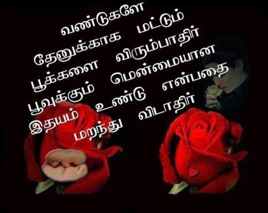 all information tamil love quotes with images