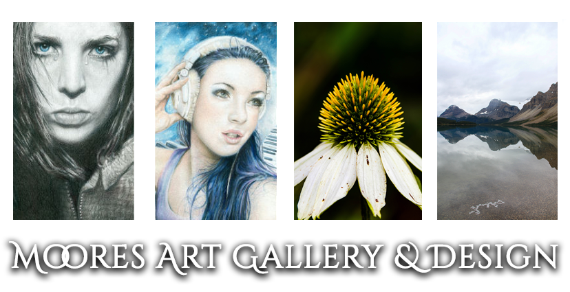Moores Art Gallery & Design Blog