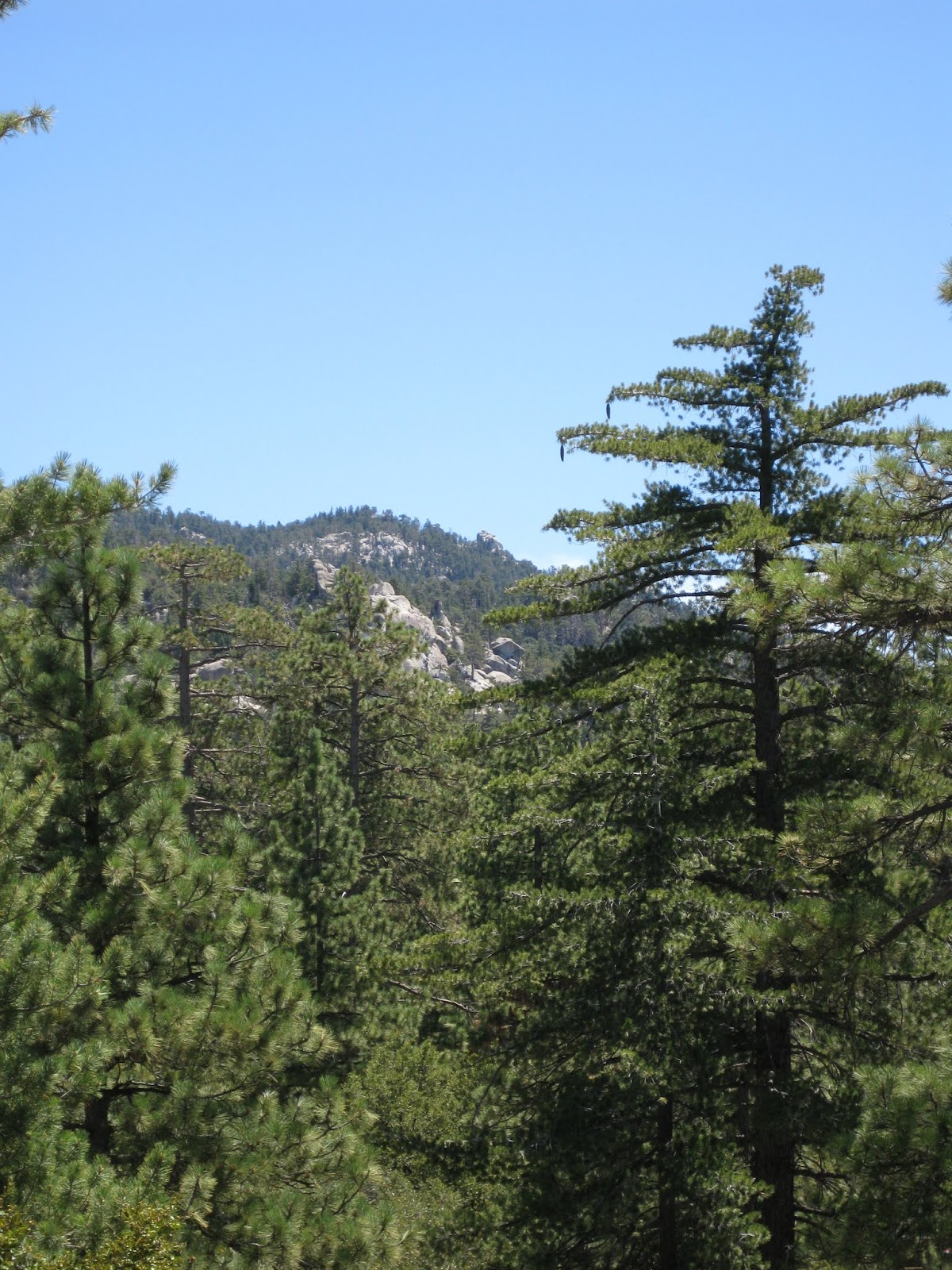 Nestled at an elevation of more than 7, feet, Thousand Trails Idyllwild RV camping grounds is one of the few destinations in Southern California with all four seasons. With close to sites spread over acres, the Idyllwild RV campground in California is a full-service preserve with something for everyone, from basic tent camping to sites for your luxury RV.