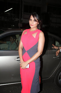Richa Chadda in a Full LEngth Figure Hugging Colorful gown at Sanja Leela Bhansali Party