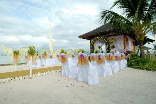 Wedding Flower Wedding Bouquet Decorative Beach Wedding Flowers Collection
