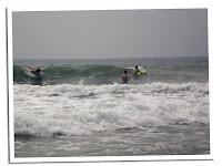 surf india