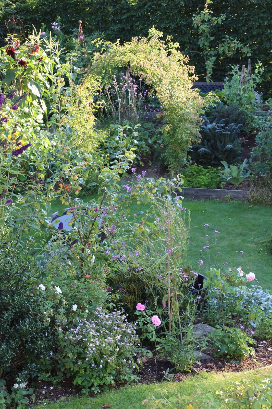 trädgårdsbloggar