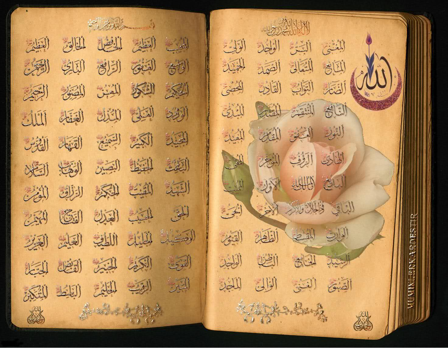 99 Names Of Allah Mp3 (Asmaul Husna) for Android - APK Download