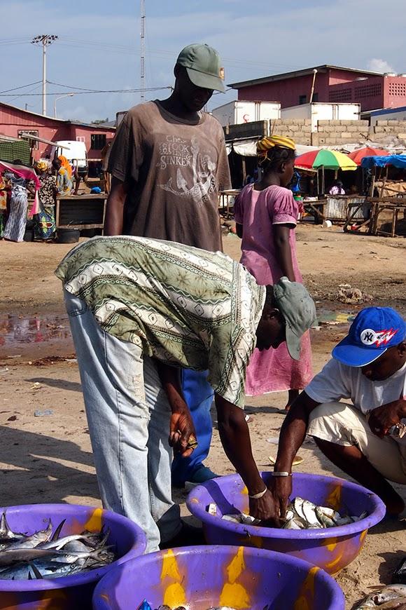tanji market gambia
