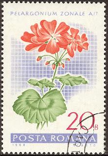 1968 Posta Romana - Pelargonium Zonale, Muscata