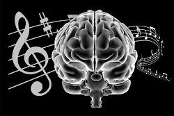 "Influencia Perfeita ""musica"""