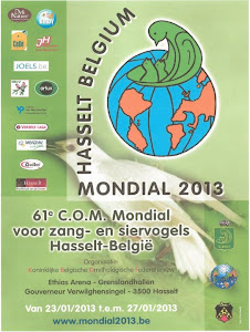 61CAMPEONATO  MUNDIAL DE ORNITOLOGIA EM HASSELT - BELGICA 2013