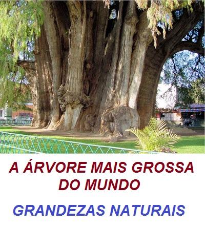 GRANDEZAS NATURAIS