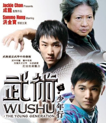 Poster Of Wushu (2008) Full Movie Hindi Dubbed Free Download Watch Online At worldfree4u.com