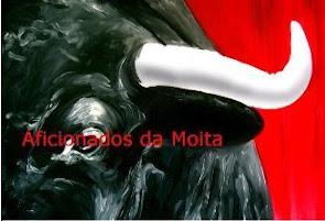 """Blog/Site """"Aficionados da Moita"""""""