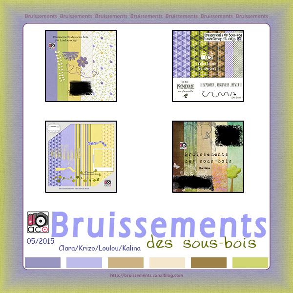 http://bruissements.canalblog.com/