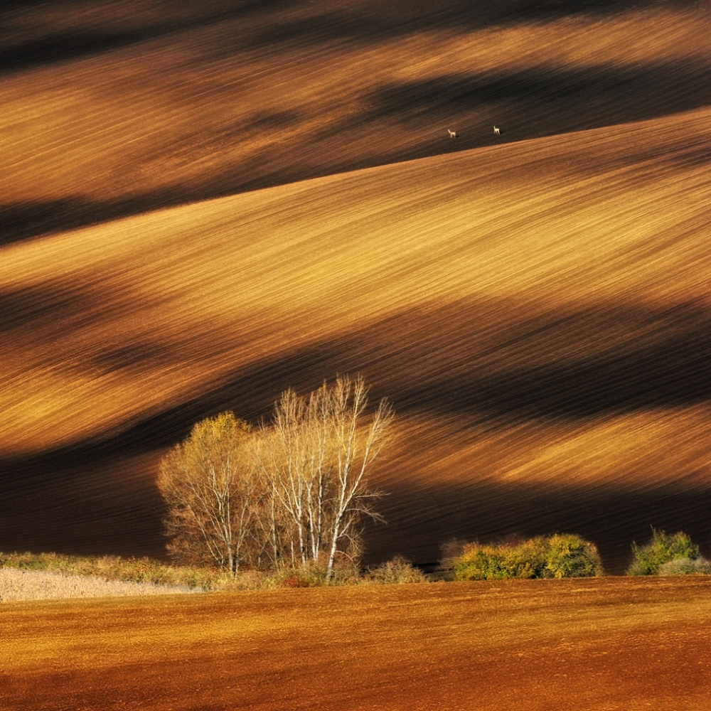 The 100 best photographs ever taken without photoshop - Moravian fields, Czech Republic