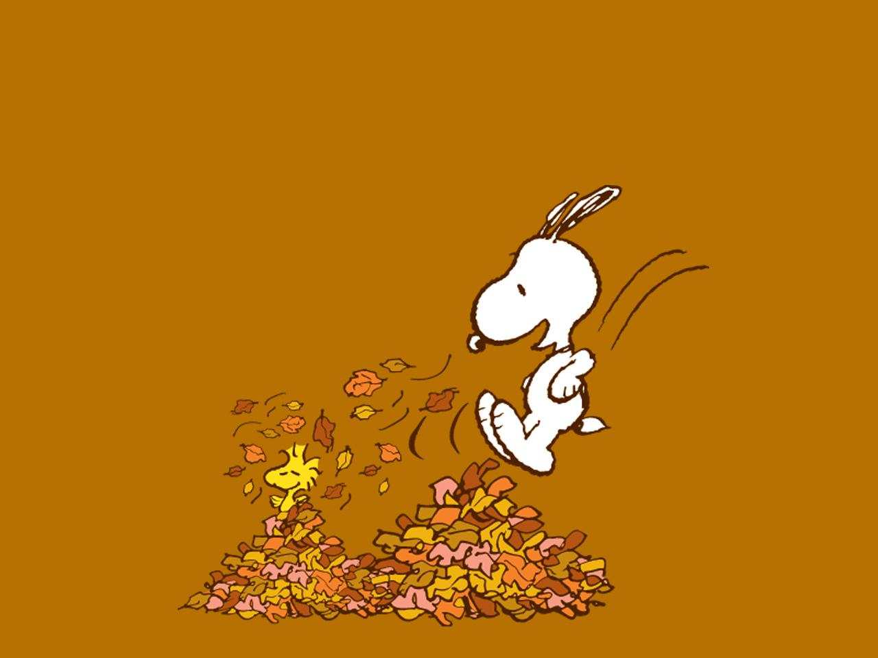 落ち葉とスヌーピー