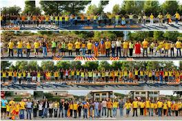 Via catalana 2013