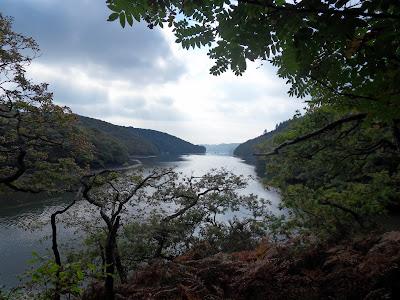 River Lerryn, Cornwall