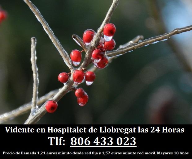 Vidente en Hospitalet de Llobregat las 24 Horas