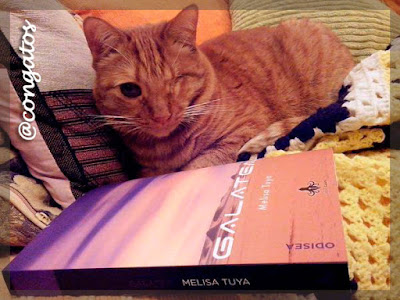 Gato Galatea Melisa Tuya