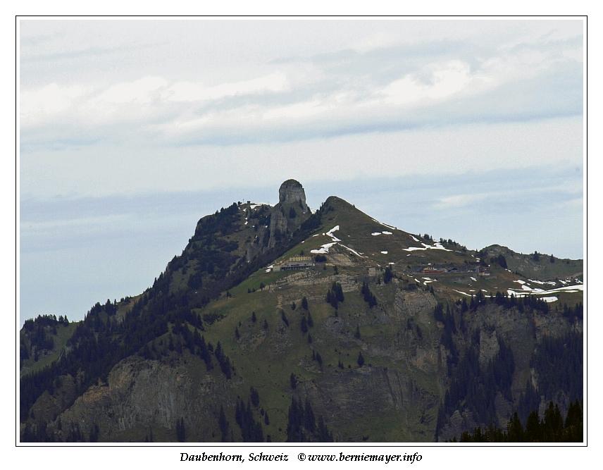 Daubenhorn
