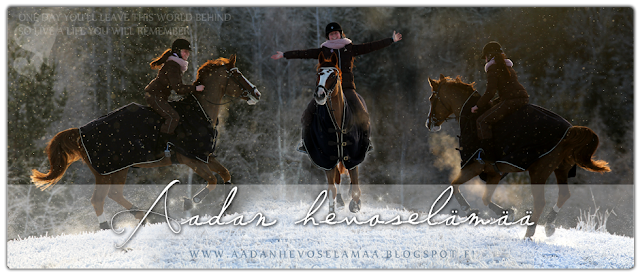 Aadan hevoselämää