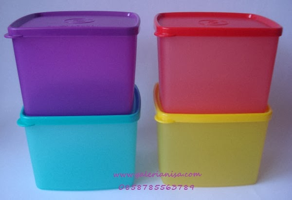 Tupperware Promo Medium Large Square Round (4)