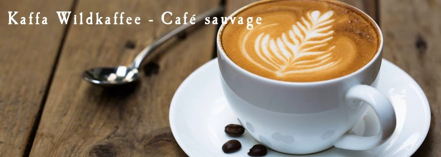 Kaffa Wildkaffee - Café sauvage